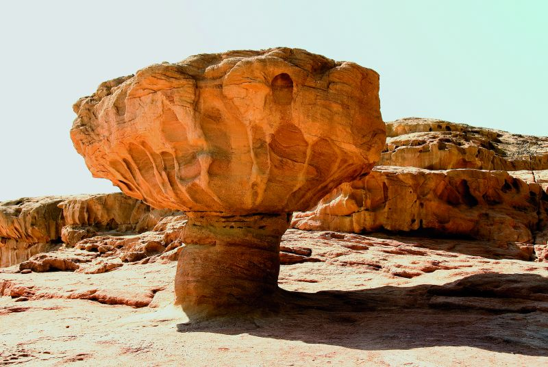 Mushroom Stone