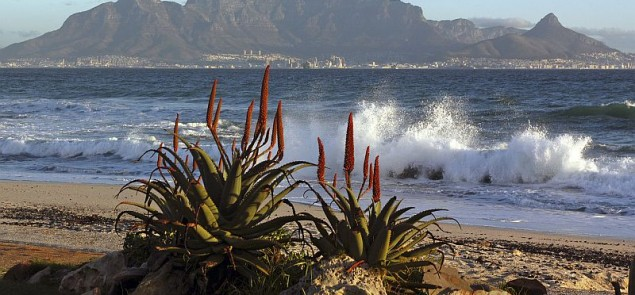 Cape Town, Południowa Afryka. Fot. istock.com