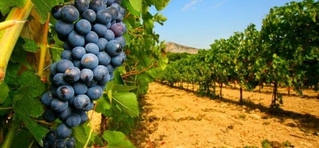Fot. AndreaOiser - Fotolia.com