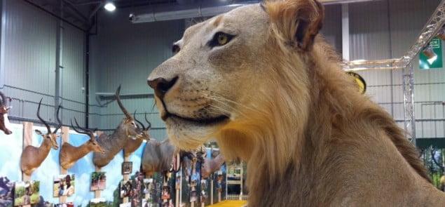 Hubertus Expo Hunting 2013