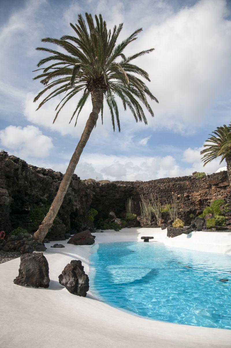 lago con palmera