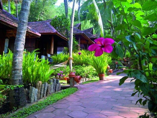 kerala ogród