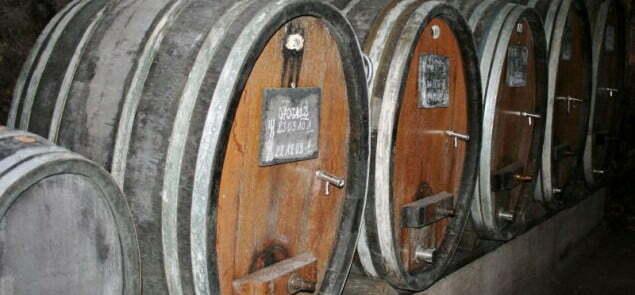 Uprawa winorośli w Alzacji została brutalnie przerwana przez Wojnę Trzydziestoletnią. Odrodziła się dopiero po pierwszej wojnie światowej, gdy winiarze zdecydowali się na produkcję trunków, których recepturę opracowano na bazie szlachetnych szczepów. Fot. Megan Mallen/Wiki Commons lic 2.0