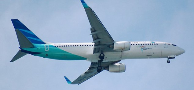 Garuda Indonesia Boeing 737 - Wikipedia