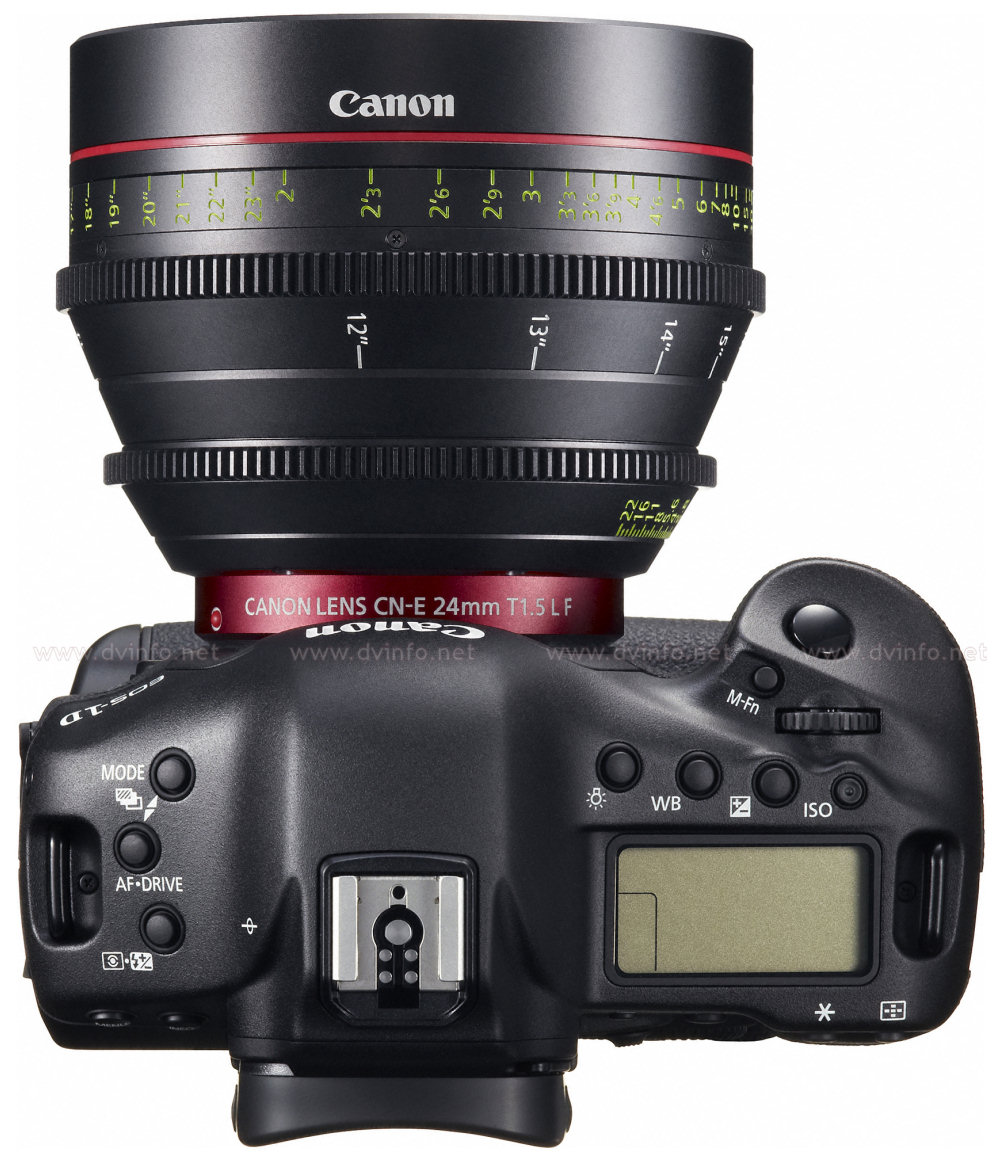 eos1dlens24-top