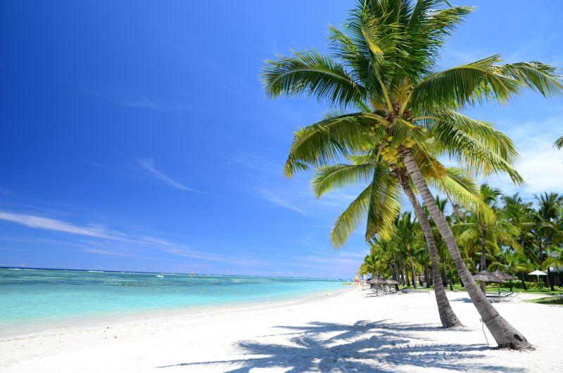 Mauritius i jego plazę. Fot. Fotolia.com