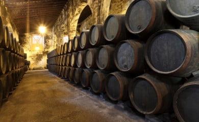 grecja wina pano
