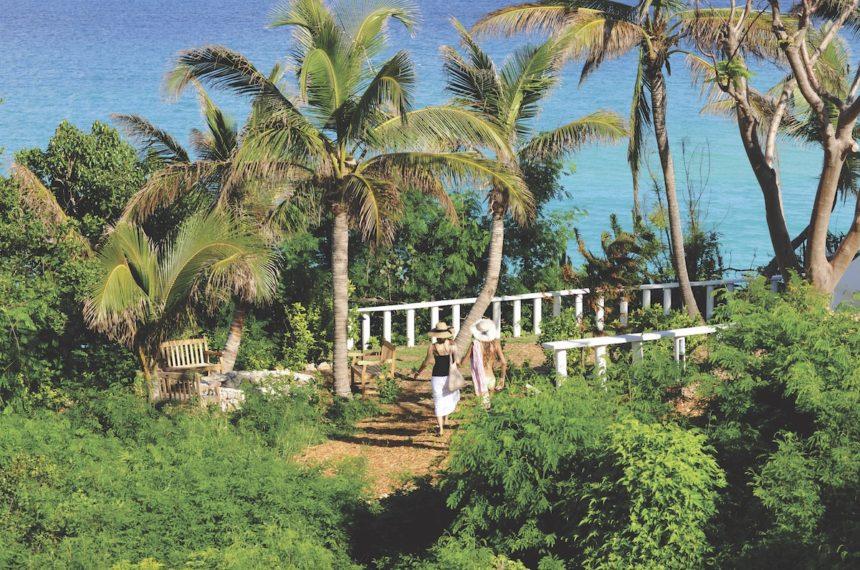 karaiby1